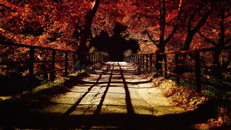 Ponticello in autunno immagine stock libera da diritti