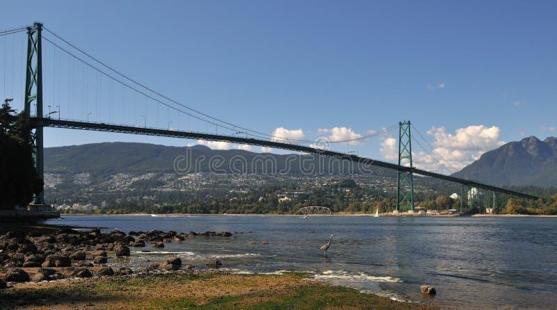 Ponticello del cancello dei leoni, Vancouver fotografia stock