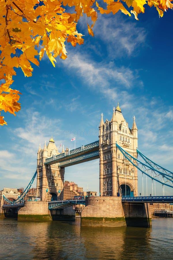 Ponticello della torretta a Londra immagini stock