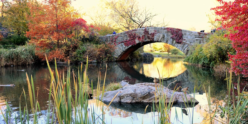 Ponticello di Gapstow in Central Park fotografia stock libera da diritti