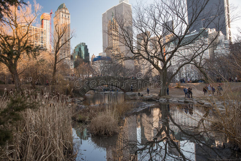 Ponticello di Gapstow in Central Park fotografie stock