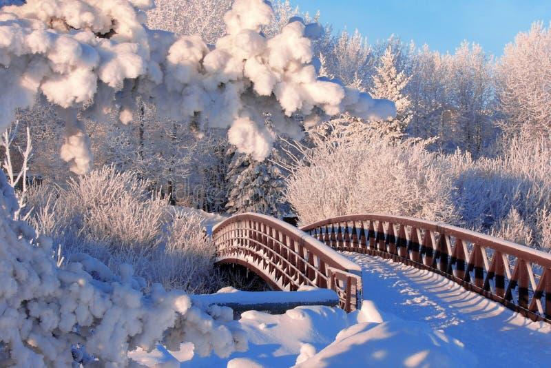 Ponticello di inverno fotografie stock libere da diritti