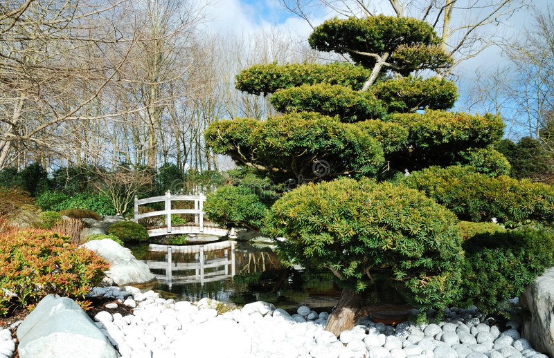Ponticello in giardino giapponese fotografie stock libere da diritti