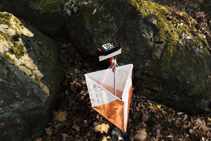 Ponto de controle running da navegação do vencedor da bandeira de Forest Orienteering Competition Cross-Country Sport do ponto de fotos de stock