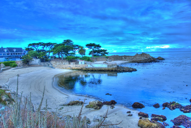 Ponto do amante no bosque pacífico, Califórnia fotos de stock royalty free