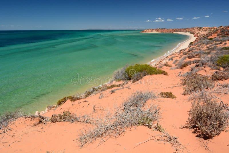 Ponto dos Skipjack Parque nacional de François Peron Baía do tubarão Austrália Ocidental fotografia de stock royalty free
