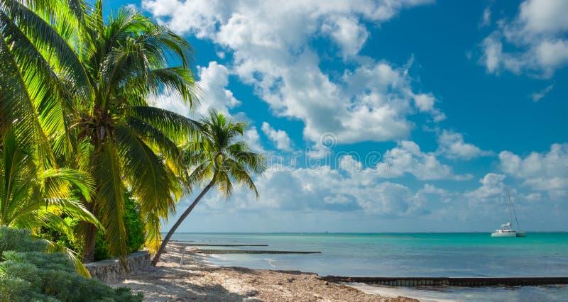 Ponto grande do Caimão-rum fotografia de stock royalty free