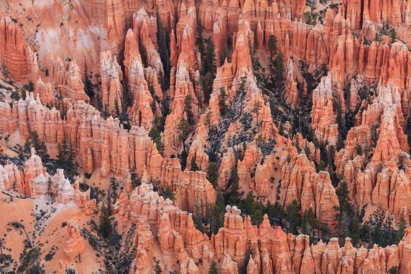 Ponto no nascer do sol, Bryce Canyon National Park da inspiração, Utá, foto de stock royalty free