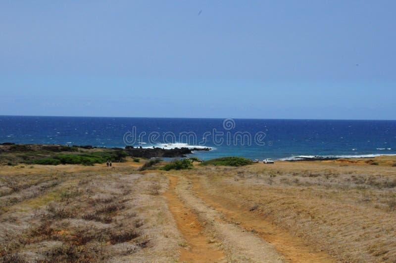 Ponto sul Havaí imagens de stock royalty free