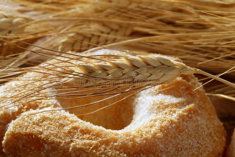 Pontos deliciosos do açúcar e do trigo da padaria do rolo imagem de stock