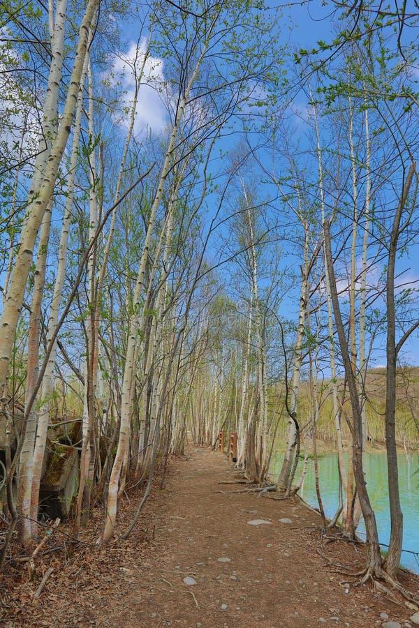 pontos sightseeing no Hokkaido, lagoa azul da platina imagem de stock royalty free
