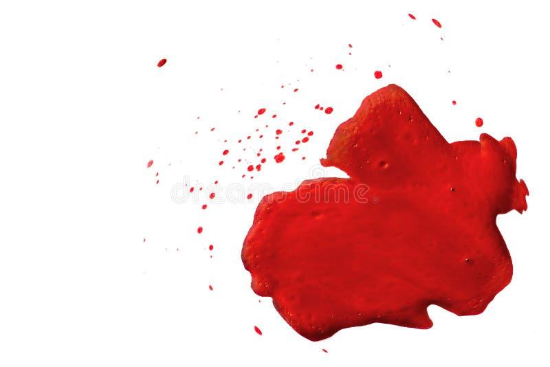 Pontos vermelhos no fundo isolado branco As gotas do sangue ou chapinham, pintura, suco, tra??o da ketchup imagem de stock royalty free