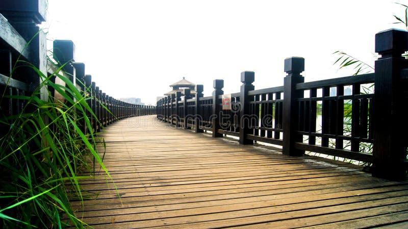 Ponts en beau parc photo stock