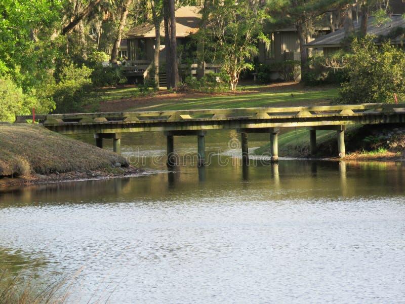Ponts en bois vigoureux enjambant les courants et les criques scéniques images stock