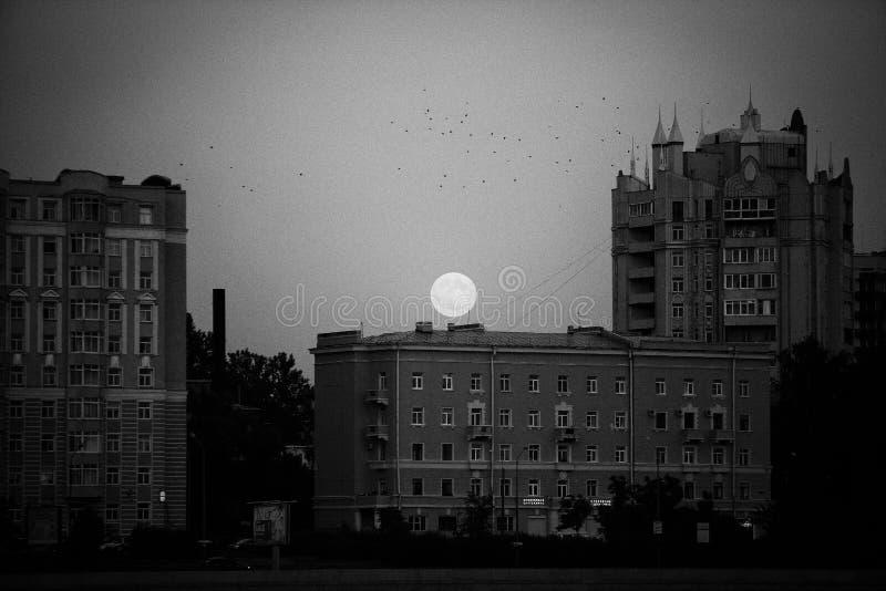 Ponura księżyc pod Petersburg Rocznik obraz stock