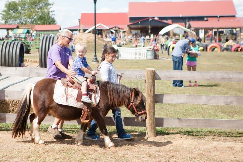 Pony Ride for Kids stock photo