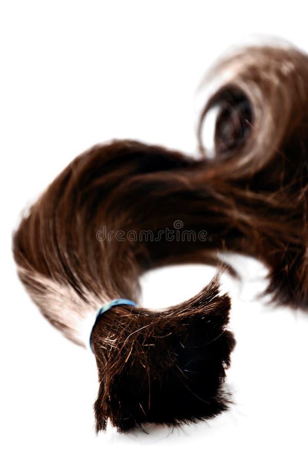 Free Ponytail Royalty Free Stock Images - 13865059