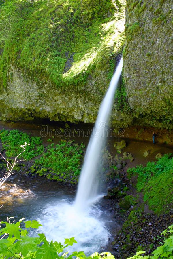 Ponytail Falls in Columbia River Gorge, Oregon. Ponytail Falls, also called Upper Horsetail Falls, is one of the many stunning waterfalls on the south shore of royalty free stock images