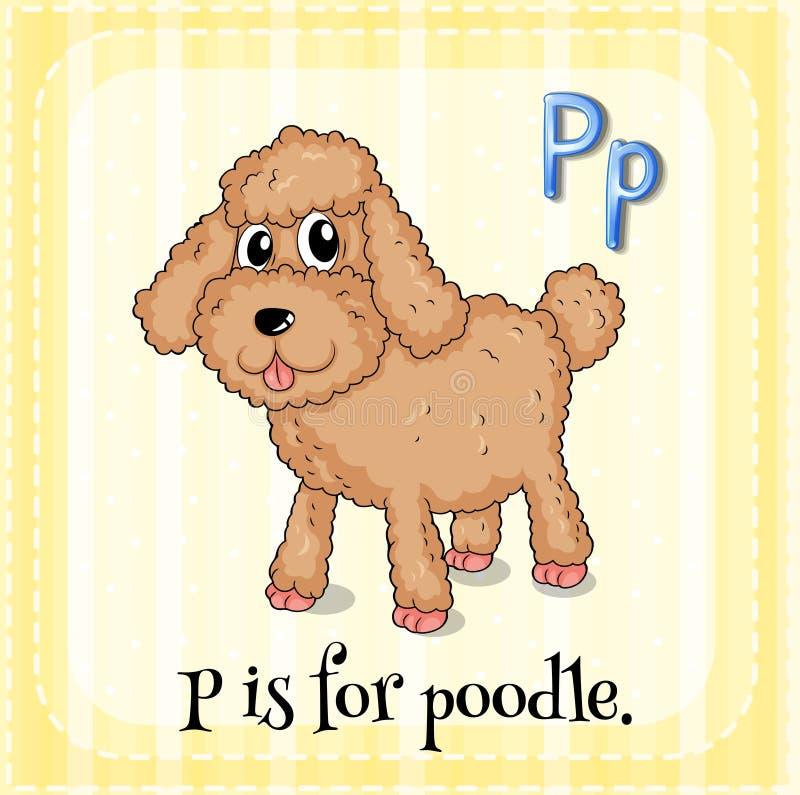 Poodle. Flashcard letter P is for poodle royalty free illustration