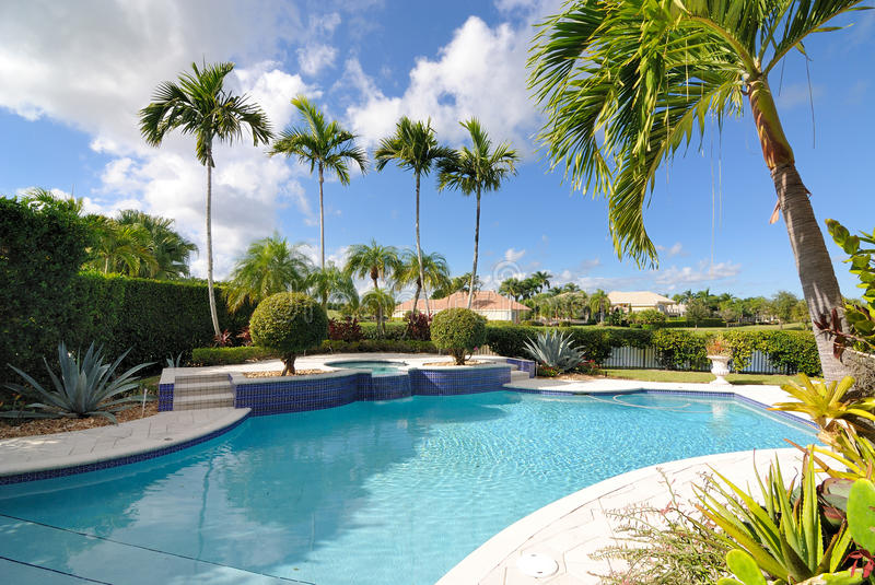 Download Pool stock photo. Image of outdoors, home, palm, palms - 17221452
