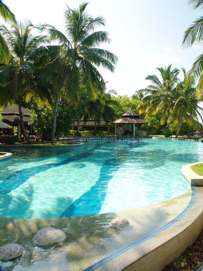Download A Pool stock image. Image of tropical, poolbar, area, lare - 192893