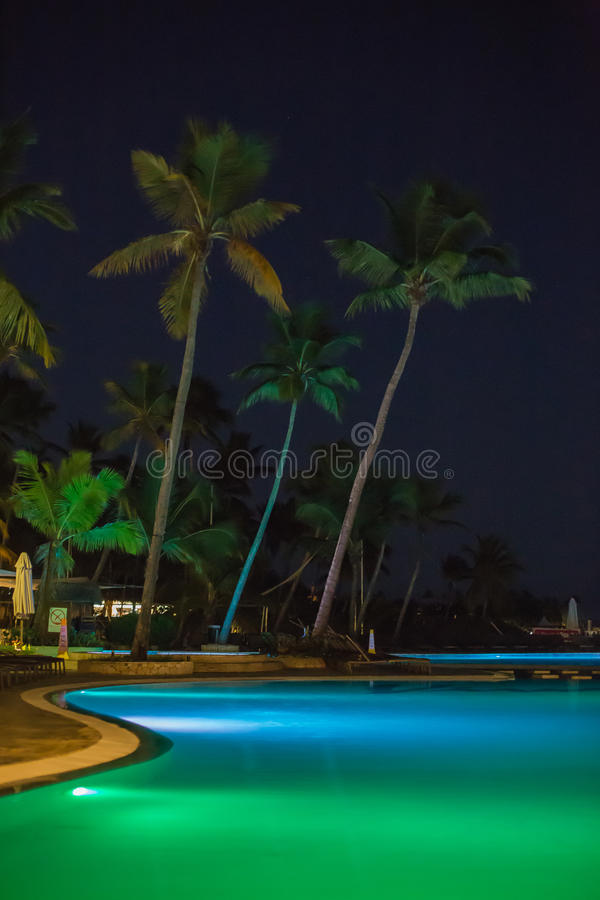 Free Pool And Palms Royalty Free Stock Photography - 45330807
