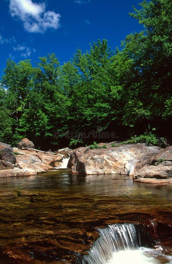 Pool auf der Stier-Niederlassung läuft über einen kleinen Wasserfall aus stockbilder