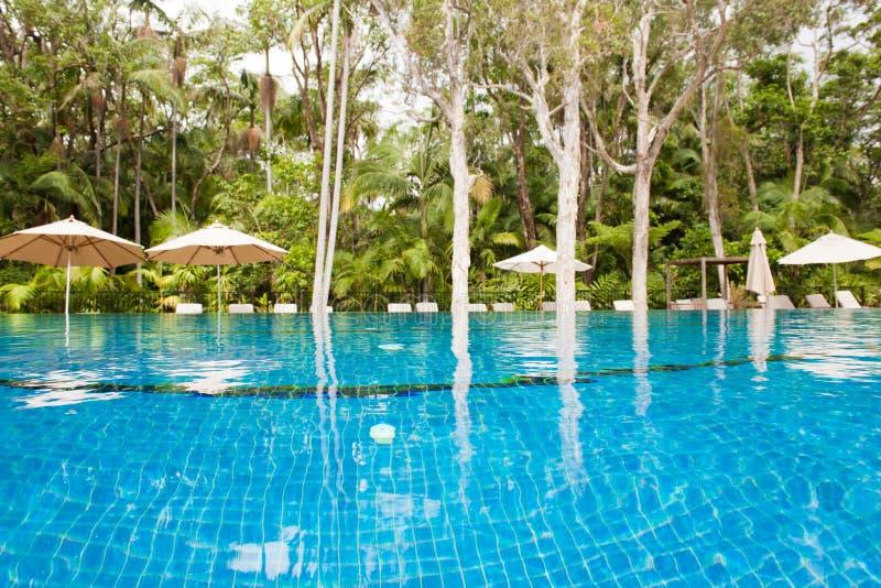 Pool bij de rand van de wildernis, Byron in Byron Resort en Kuuroord, Australië stock afbeelding