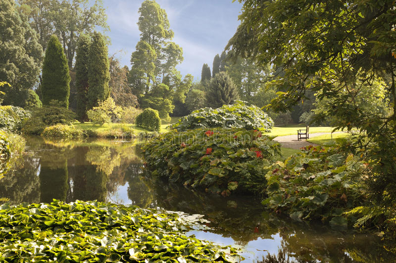 Pool At Cholmondley Royalty Free Stock Image