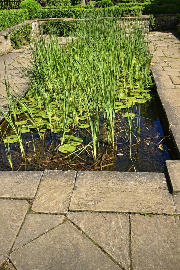 Pool in een Mooie tuin in Engeland van West-Yorkshire stock fotografie