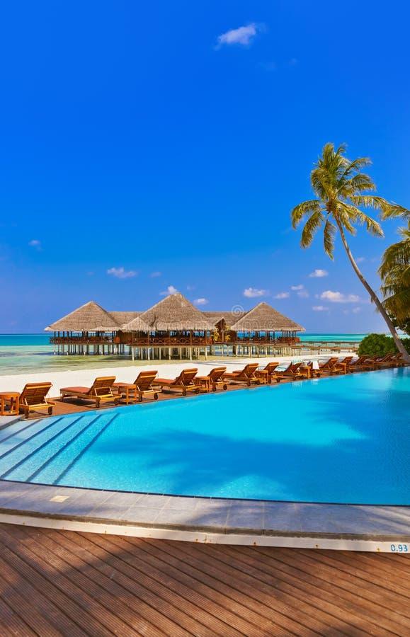Pool en koffie op het strand van de Maldiven stock foto's