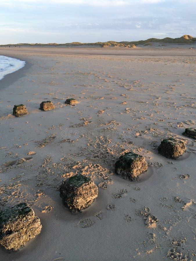 Pool-hoofden in het zand stock foto's