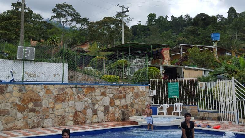 Pool im selvatic chalett lizenzfreies stockbild