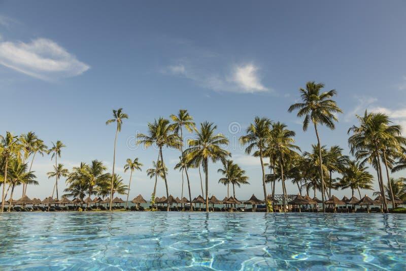 Pool mit Palmen nahe dem Ozean während eines schönen Sonnenuntergangs lizenzfreie stockbilder