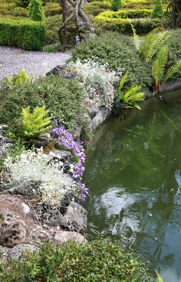 Garden Pool reflects flower border royalty free stock image