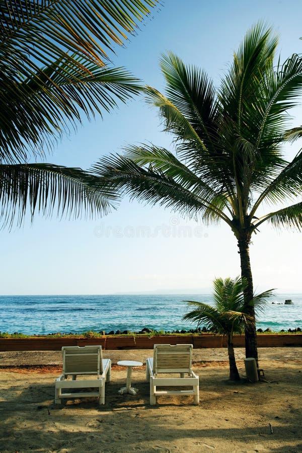 pool resort swimming arkivbilder