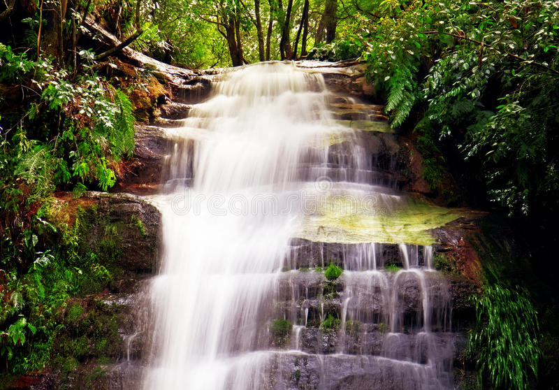 Pool of Saloam, Blue Mountains royalty free stock images
