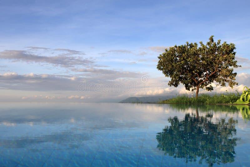 Pool am See manyara Tanzania lizenzfreie stockbilder