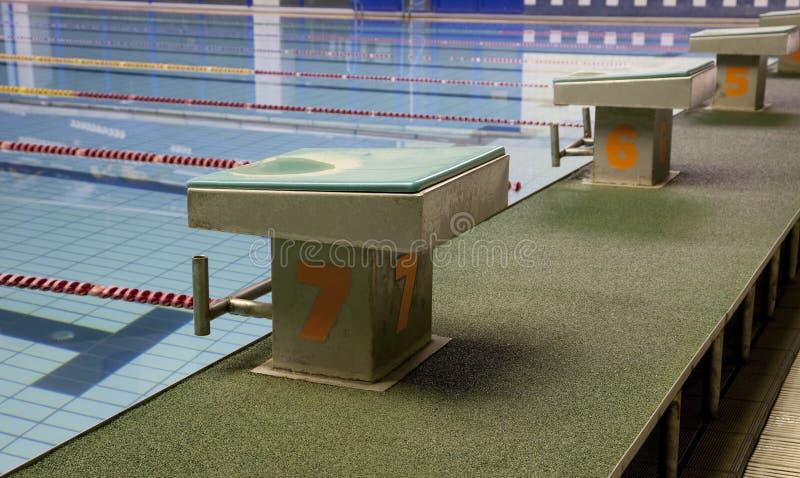 pool simning royaltyfri fotografi
