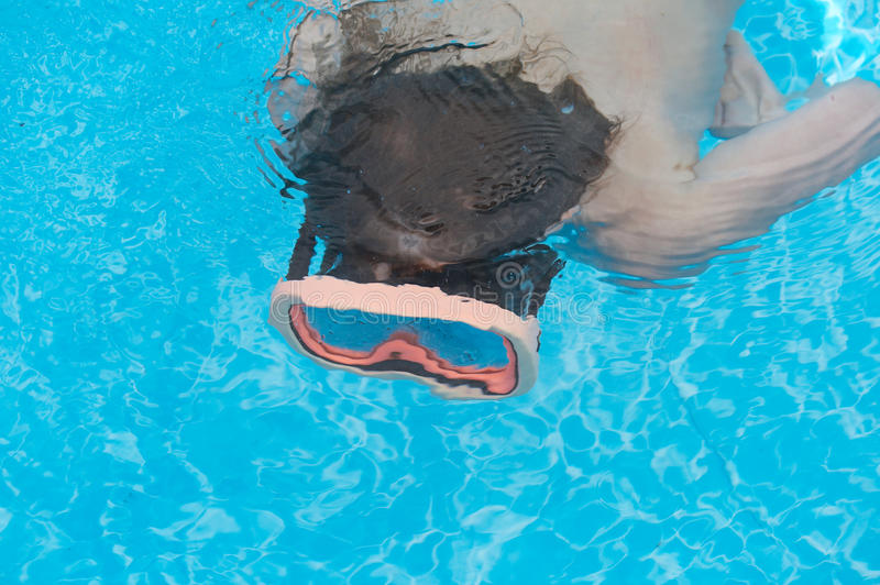 Pool swim royalty free stock image