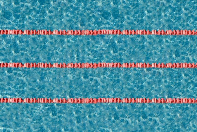 pool swimming στοκ εικόνα