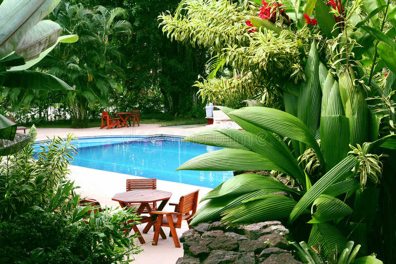 Pool in tropical setting royalty free stock photos