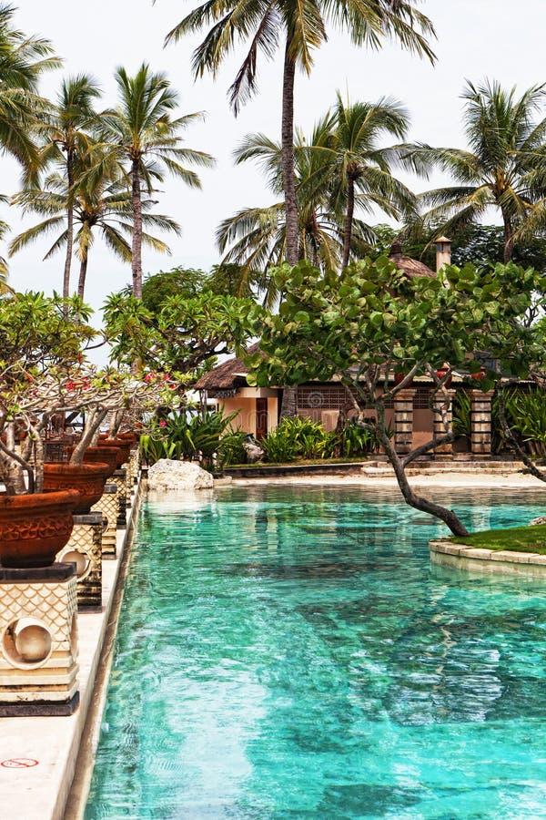 Pool in tropics