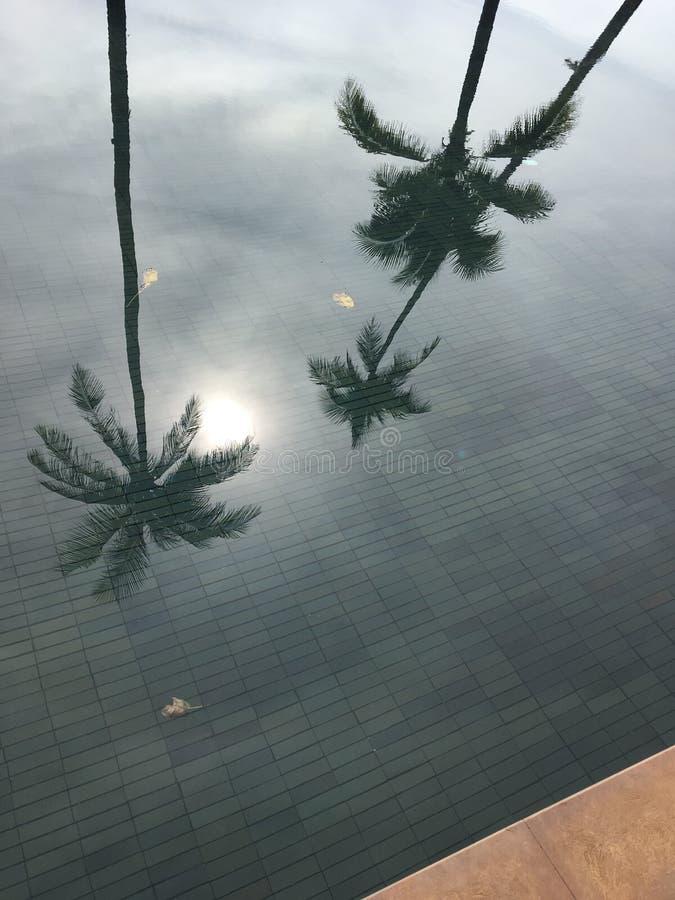 Poolbezinning stock foto
