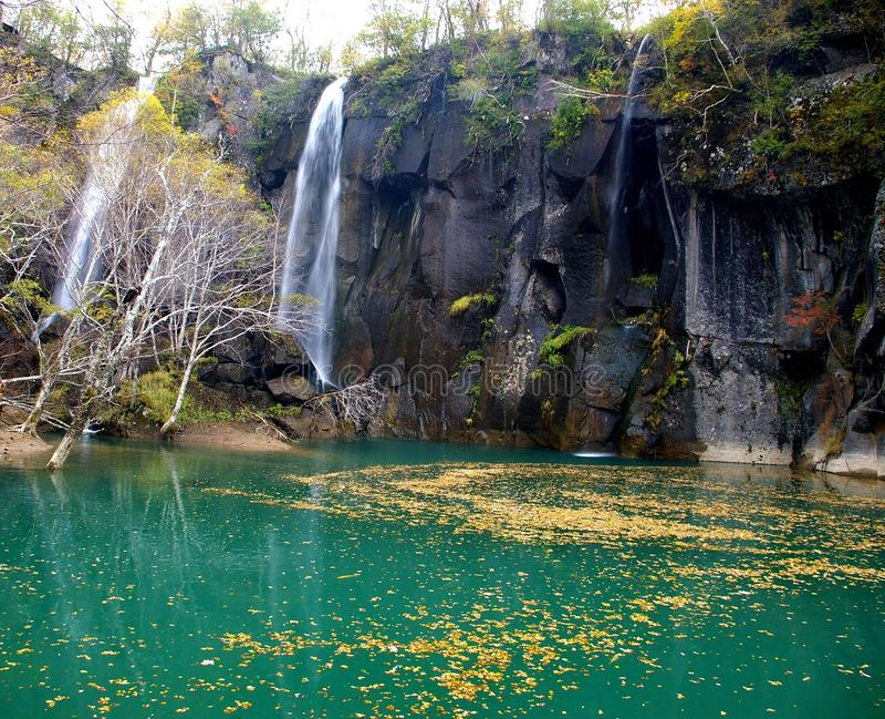 Autumn,Fall, falls, lakes, fallen leaves stock photos
