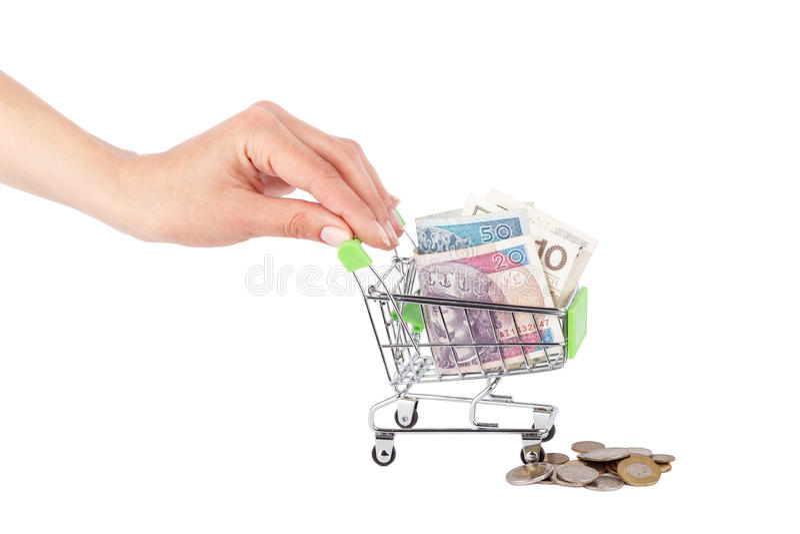 Poolse die zloty in de het winkelen handkar op vrouwen` s palm, op wit wordt geïsoleerd royalty-vrije stock afbeeldingen