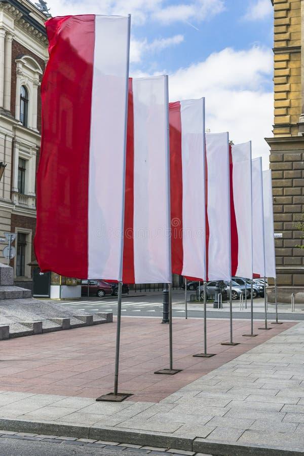 Poolse nationale vlaggen royalty-vrije stock fotografie