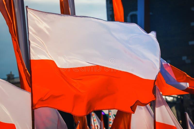 Download Poolse vlag stock afbeelding. Afbeelding bestaande uit patriottisme - 107702291