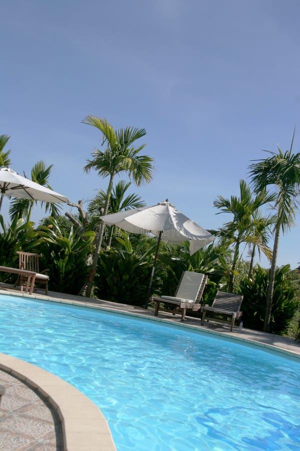 Download Poolside 1 stock photo. Image of summer, umbrella, travel - 1417968