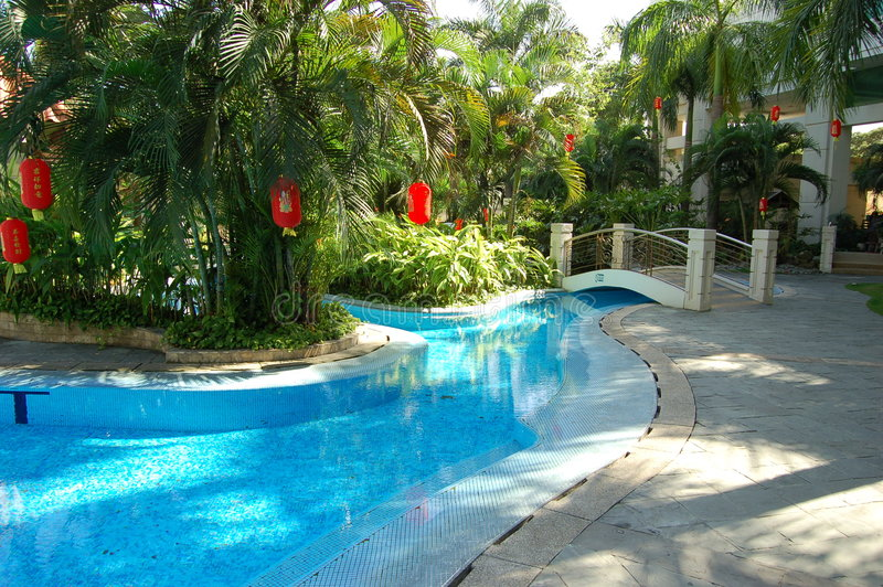 Poolside-Palmen stockfotos